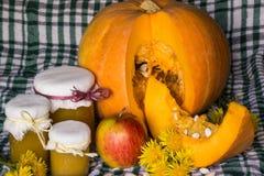 A abóbora e a abóbora bloqueiam, puré ou molho no verde com toalha de mesa branca Do outono vida ainda Imagem de Stock Royalty Free