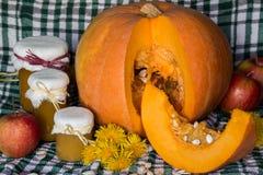 A abóbora e a abóbora bloqueiam, puré ou molho no verde com toalha de mesa branca Do outono vida ainda Fotos de Stock Royalty Free