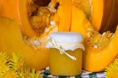A abóbora e a abóbora puree ou molho (doce) no verde com toalha de mesa branca Do outono vida ainda Foto de Stock Royalty Free