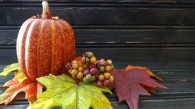 Abóbora e folhas alaranjadas Imagem de Stock Royalty Free