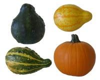 Abóbora e gourds isolados no branco imagens de stock royalty free