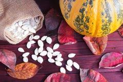 Abóbora e sementes de abóbora Fotografia de Stock