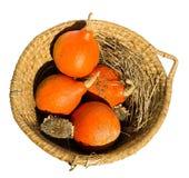 Abóbora em uma cesta isolada Imagem de Stock Royalty Free