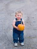 Abóbora feliz da terra arrendada do menino Fotografia de Stock