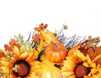 Abóbora, girassóis e folhas da queda isoladas outono Fotografia de Stock