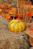 Abóbora na palha como a decoração do outono no mercado Imagens de Stock