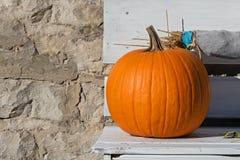 Abóbora no banco ao lado da parede de pedra Imagem de Stock Royalty Free