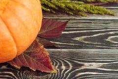 Abóbora no contexto de madeira Foto de Stock Royalty Free