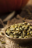Abóbora orgânica crua Pepita Seeds Fotos de Stock Royalty Free