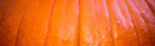 Abóbora panorâmico Foto de Stock