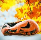 Abóbora podre após o feriado Dia das Bruxas em um fundo imagem de stock royalty free