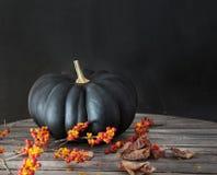 Abóbora preta com bagas e folhas Fotos de Stock Royalty Free