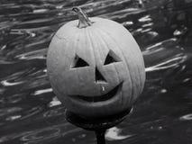 Abóbora preto e branco Fotos de Stock Royalty Free