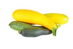 Abóbora vegetal (abobrinha) Fotografia de Stock