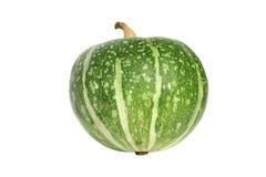 Abóbora verde isolada Imagens de Stock Royalty Free