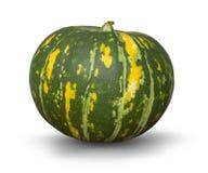 Abóbora verde isolada Fotografia de Stock