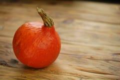 Abóbora vermelha do Hokkaido do kuri imagens de stock