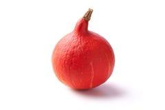 Abóbora vermelha pequena Fotos de Stock Royalty Free
