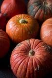 Abóboras alaranjadas orgânicas na tabela de madeira, fundo da abóbora da ação de graças, colheita do outono Fotos de Stock Royalty Free