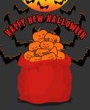 Abóboras assustadores do saco para Dia das Bruxas Saco completo de vegetais para o te Imagem de Stock Royalty Free
