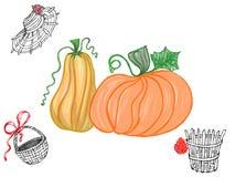 Abóboras coloridas e cesta preta & branca com os detalhes vermelhos tirados pelo lápis, pela aquarela e pela pintura acrílica par ilustração stock