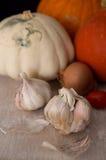 Abóboras com cebola, alho e tomates Fotos de Stock Royalty Free