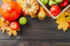 Abóboras com folhas de bordo coloridas, maçãs maduras em uma caixa e pera no fundo de madeira escuro Imagem sazonal do outono com fotos de stock royalty free
