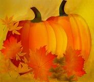 Abóboras com folhas. Fundo do outono. Vetor. Foto de Stock Royalty Free