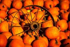 Abóboras com uma roda de vagão velha Imagem de Stock