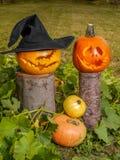abóboras da Jack-o-lanterna Fotografia de Stock Royalty Free