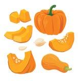 Abóboras da laranja do outono ilustração stock
