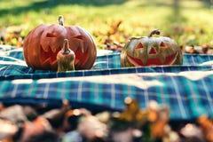 Abóboras de Dia das Bruxas exteriores no parque Fotos de Stock Royalty Free