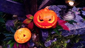 Abóboras de Dia das Bruxas na pedra com musgo em uma floresta assustador Fotografia de Stock