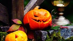 Abóboras de Dia das Bruxas na pedra com musgo em uma floresta assustador Imagem de Stock Royalty Free