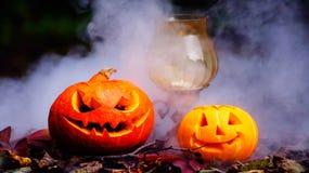 Abóboras de Dia das Bruxas na tabela de madeira em uma floresta assustador Fotografia de Stock