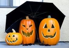 Abóboras de Halloween Imagem de Stock