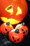 Abóboras de Halloween Imagens de Stock Royalty Free