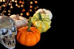 Abóboras de Halloween com crânio Imagens de Stock