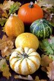 Abóboras de outono com as folhas na placa de madeira Imagens de Stock Royalty Free