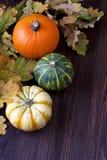 Abóboras de outono com as folhas na placa de madeira Imagens de Stock