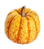 Abóboras do Dia das Bruxas do outono isoladas Foto de Stock Royalty Free