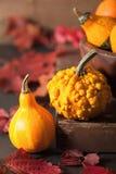 Abóboras do Dia das Bruxas do outono no fundo de madeira Imagem de Stock
