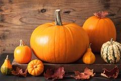Abóboras do Dia das Bruxas do outono no fundo de madeira Fotografia de Stock