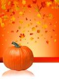 Abóboras e folhas de outono. ilustração stock