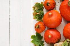 Abóboras e folhas de outono em um fundo de madeira branco Fotografia de Stock Royalty Free