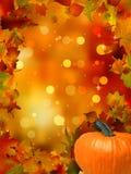 Abóboras e folhas de outono. EPS 8 Foto de Stock Royalty Free