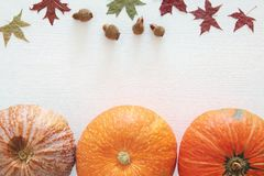 Abóboras e folhas de outono no fundo de madeira ação de graças e conceito do Dia das Bruxas Imagem de Stock Royalty Free