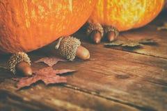 Abóboras e folhas de outono no fundo de madeira ação de graças e conceito do Dia das Bruxas Vista superior Imagem de Stock Royalty Free