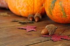 Abóboras e folhas de outono no fundo de madeira ação de graças e conceito do Dia das Bruxas Vista superior Foto de Stock