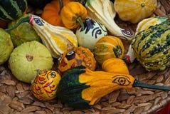 Abóboras e gourds Foto de Stock